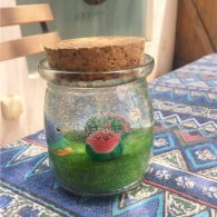 手工蜡烛店分享装着西瓜的果